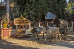 Mingun near Mandalay - Myanmar (Burma) Stock Images
