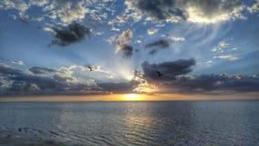 Minha opinião do estado de Florida Fotografia de Stock
