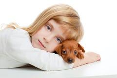 miniälsklings- pinscher för blond maskot för hundflickaunge Arkivbilder