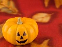 Mini abóboras com faces engraçadas em um Clo vermelho do outono Fotografia de Stock Royalty Free