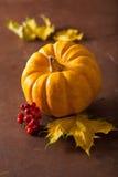 Mini abóboras e folhas de outono decorativas para o Dia das Bruxas Foto de Stock Royalty Free