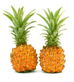Mini ananas Photos stock