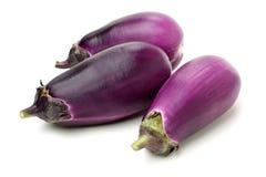 Mini Baby Eggplant fotografia de stock