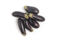 Mini Baby Eggplant Photographie stock libre de droits