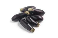 Mini Baby Eggplant Royaltyfri Bild