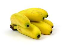Mini bananes de groupe Image libre de droits