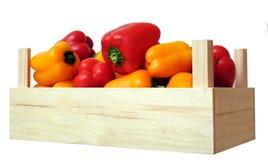 Mini bell pepper stock photo