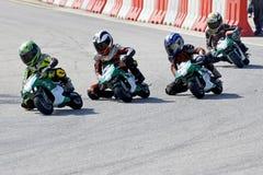 Mini Bike Championship Action Royalty Free Stock Image