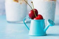 Mini Blue Watering Can met Twee Rijp Cherry Fruit royalty-vrije stock fotografie