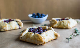 Mini blueberry pies Stock Image