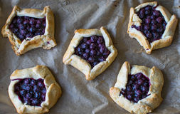 Mini blueberry pies Royalty Free Stock Photo