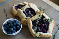 Mini blueberry pies Royalty Free Stock Photos