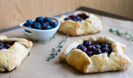 Mini blueberry pies Stock Photography