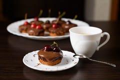 Mini bolo de queijo com chocolate e cereja Imagens de Stock Royalty Free