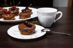 Mini bolo de queijo com chocolate e cereja Imagem de Stock