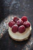Mini bolo de queijo da framboesa Imagem de Stock Royalty Free
