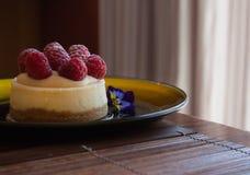 Mini bolo de queijo da framboesa fotos de stock royalty free
