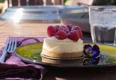 Mini bolo de queijo da framboesa imagens de stock royalty free