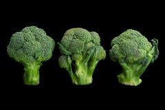 Mini broccoli cabbage on black Royalty Free Stock Photography