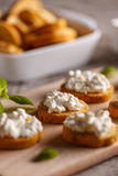 Mini bruschetta with cottage cheese Royalty Free Stock Image