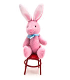 Mini Bunny In Chair Stock Photography