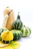 Mini bunte Kürbise und Herbstlaub lokalisiert auf Weiß Stockfoto