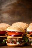 Mini burger Royalty Free Stock Image