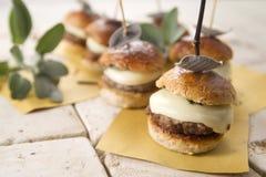Mini Burgers Fotografia Stock Libera da Diritti