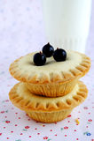 Mini cakes with berries Stock Images