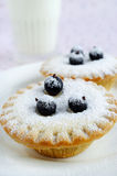 Mini cakes with berries and icing sugar Stock Photo