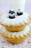 Mini cakes with berries and icing sugar Stock Photography