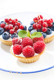 Mini cakes with cream and berries on plate, vertical Stock Photography