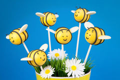 Bee cake pops Stock Photography