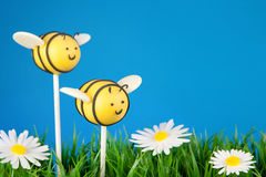 Bee cake pops Royalty Free Stock Images
