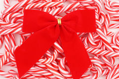Mini Candy Canes with Bow Royalty Free Stock Image