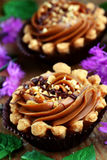 Mini caramel tart. Close up of caramel shortbread cupcakes with nuts Royalty Free Stock Photography