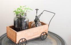 Mini carro de jardín Imagen de archivo