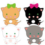Mini cats Stock Photo