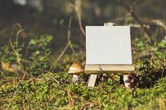 Mini cavalletto sul fondo stagionale della foresta Fotografie Stock