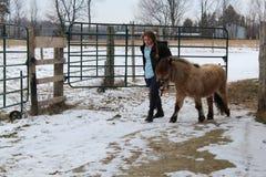 Mini cavallino che cammina con la ragazza teenager fotografia stock libera da diritti