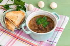 Mini cazuela de la sopa de champiñones con perejil y y tostada asada a la parrilla imágenes de archivo libres de regalías