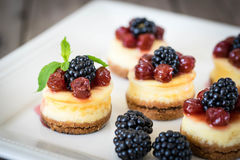 Mini cheesecake with cherry Royalty Free Stock Photography