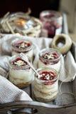 Mini Cheesecakes Fotografía de archivo