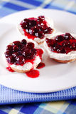 Mini cheesecakes with cranberries Stock Photos