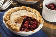 Mini Cherry Pie Dessert Royalty Free Stock Photo