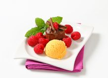 Mini chocolate cake with fresh raspberries and ice cream Royalty Free Stock Image