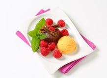 Mini chocolate cake with fresh raspberries and ice cream Stock Photos