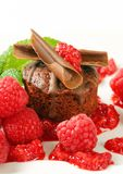 Mini chocolate cake with fresh raspberries. Mini chocolate cake served with fresh raspberries Stock Image