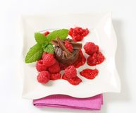 Mini chocolate cake with fresh raspberries. Mini chocolate cake served with fresh raspberries Royalty Free Stock Photo