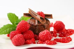 Mini chocolate cake with fresh raspberries. Mini chocolate cake served with fresh raspberries Royalty Free Stock Photos